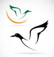 flying wild duck vector image vector image