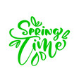 green calligraphy lettering phrase spring time vector image vector image