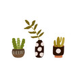 house plants in ceramic pots and vase for home vector image vector image