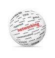 Networking globe vector image