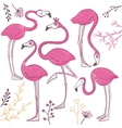 Set of funny hand drawn flamingos vector image vector image