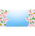 beautiful branches sakura vector image vector image