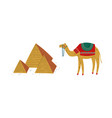 camel animal and triangular pyramid structure vector image