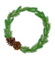 christmas fir-tree wreath isolated on white vector image vector image