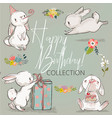 cute birthday hares collection vector image vector image