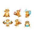 cute owl cartoon character set adorable funny vector image vector image