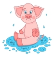 Cute pig in a puddle sits and smile on water vector image vector image