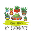 sign with cactus or banner with succulent plants vector image