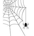spidr web 04 vector image