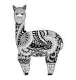 alpaca vector image