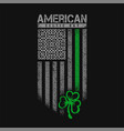 american celtic day flag grunge vector image vector image