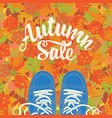 autumn sale banner with inscription and shoes vector image vector image