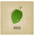 leaf eco old background vector image vector image