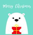 merry christmas white polar bear cub face holding vector image