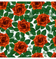seamless pattern with orange roses beautiful vector image vector image