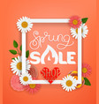 spring sale concept lettering shopping banner vector image