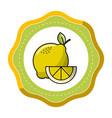 Sticker lemon fruit icon stock