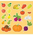 Vegetables and fruits set vector image vector image