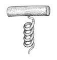 corkscrew hand drawn sketch vector image