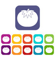 tomato icons set vector image vector image