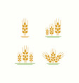 wheat logo farm template vector image vector image
