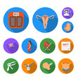 woman and pregnancy flat icons in set collection vector image