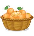 Basket of oranges vector image vector image