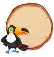 board template with cute toucan bird on white vector image vector image