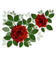 bouquet of beautiful red roses and leaves floral vector image