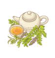 licorice tea vector image
