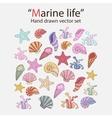 marine seaweedshells vector image vector image