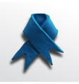 Ribbon blue vector image vector image
