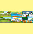 set scenes with animals at different seasons vector image
