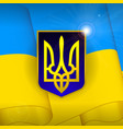ukraine flag background vector image