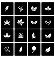black leaf icon set vector image vector image
