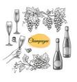 champagne big set vector image vector image