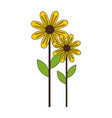 cute sunflower plant icon vector image