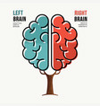human brain concept for right and left hemisphere vector image