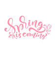 pink color calligraphy lettering phrase spring is vector image vector image