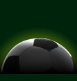 realistic soccer ball banner vector image