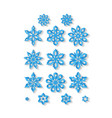set carved snowflakes isolated on white vector image