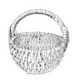 sketch of wicker basket vector image