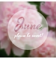 Summer concept with some peonies on the background vector image