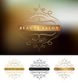 beauty salon frame logo design vector image vector image