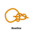 bowline sea knot bright colorful how-to guide on vector image