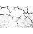 Cracked texture white and black 2 road vector image vector image