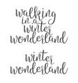 funny modern calligraphy of wonderland word vector image vector image