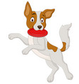 cartoon dog playing flying disc vector image