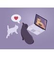 Cats internet conversation vector image