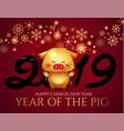 happy chineze new 2019 year invitation card vector image vector image